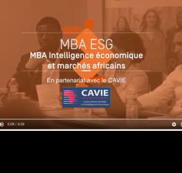 Master intelligence économique et marchés africains